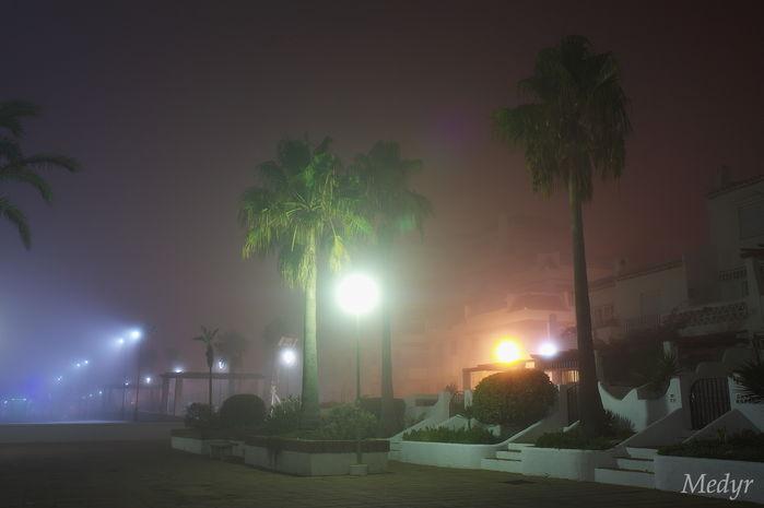 Niebla puerto duquesa